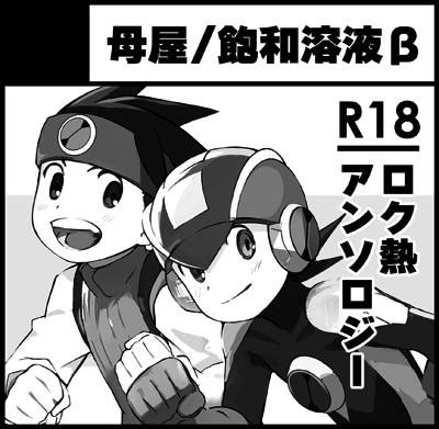 [A33]母屋/飽和溶液β